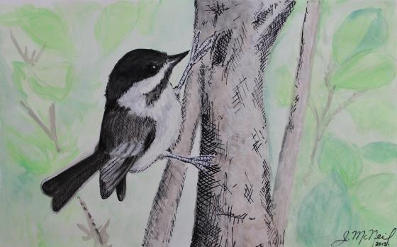 birds -16 chickadee painting